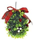 Mistletoe Kisses Fragrance Oil Candle/Soap Making Supplies FREE SHIPPING