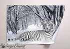 WHITE TIGER GIANT WALL ART POSTER A0 A1 A2 A3