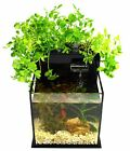 Fin to Flower Aquaponic Aquarium Mini System A