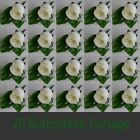 20 Wedding Bridal Silk Rose Flowers Buttonhole Corsage With Rose Leaf/Lapel Pins