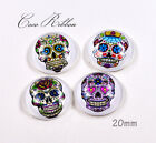 20mm 12~48pc Mixed Round Day of the Dead Sugar Skull Glass Cameo Cabochon A22