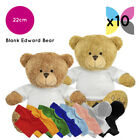 10 Blank Edward Teddy Bears Soft Toys Plain T-Shirt Hoody Transfer Sublimation