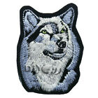 Husky Dog Patch Animal Breed Lover Sewing Crfts Apparel Iron on Applique 7*9.5cm