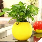 Home Office Garden Balcony Hanging Storage Decorative Flower Plant Pot Basket