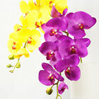 "105cm 41"" PINK BLUE 8 HEADS REAL TOUCH ARTIFICIAL SILK  PU COATING ORCHID FLOWER"