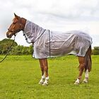 Elico Essentials Soft PVC Combo Raincover - Horse Rugs Rain Sheets