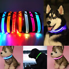 US 2017 Adjustable Bright  LED Night Glow Color Light Dog Pets Collar Necklace