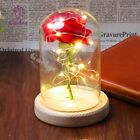 2017 BEAUTY AND THE BEAST INSPIRED ENCHANTED ROSE IN GLASS LED RED