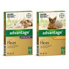 ADVANTAGE for Cats (6-Pack)-SYD Stock
