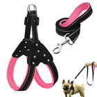 Pink Reflective Dog Harness and Leash set Step-in Safety for Small Large Dog Pet