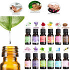 12 Scent Soluble Oil 100% Pure & Natural Fruit Plant Essential Oils Water 10ml g