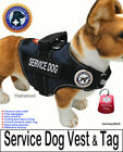 """SERVICE DOG PKG - Vest  + Dog Tag - the """"Walkabout"""" by LuvDoggy"""