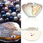 5/10PC 7.5-8MM Wholesale Akoya Oysters with Cultured Pearls Birthday Gift US New