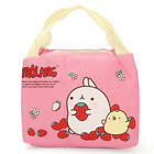 IPRee™ Cute Insulated Cooler Bag Thermal Picnic Portable Lunch Food Storage