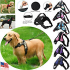 From S to XL Quality Nylon No Pull Adjustable Pet Dog Leash Collar Vest Harness