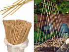 Natural Wooden Bamboo Canes Heavy Duty Plant Support Garden Thick Canes Sticks
