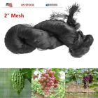 "2"" Mesh 25X50 50X50 Feet Anti Bird Netting Garden Poultry Aviary Game Nylon Net"