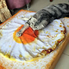 Creative Pet Cat Dog Warm Soft Fried Egg Plush Blanket Bed Mat Cushion Healthy