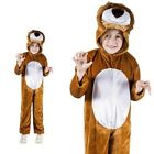Lion Lions Costume Childrens Fancy Dress Jumpsuit Lion Costume