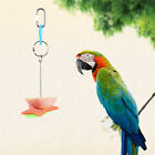 Pet Parrot Fruit Fork Birds Food Feeder Cage Hanging Feeding Supplies Bird Toy