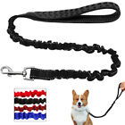 Stretchy Strong Bungee Walking Dog Leash Lead Medium  Large Dogs 2 Sizes