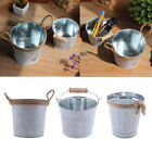 MagiDeal Metal Buckets Succulent Wedding Buckets/Mini Plant Containers