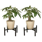 2 PCS Iron Plant Stand Rust Re...