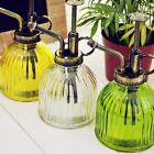 Внешний вид - Retro Style Glass Watering Can Mister Flower Garden Plant Spray Bottle & Pump