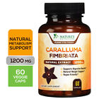 100% Pure Caralluma Fimbriata 1200mg Highest Potency Natural Weight Loss Diet $13.92 USD on eBay