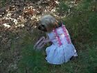 Dog Clothes Girls  Pink Harness Dress w/ 4' Matching Leash XXS XS Small