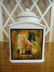 Pet Memorial Urn Personalized, Personalised, Cat, Dog, FOREVER IN MY HEART