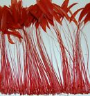 """BURNT COQUE FRINGE 6-12"""" Tall Feathers MANY COLORS Pads/Halloween/Hats/Craft"""