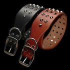 Rivet Studded Leather Genuine Dog Collar for Small Medium Large Dogs Training
