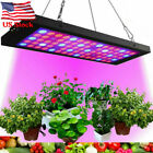 2000w LED Grow Light High Output Integrated Full Spectrum Plant Growing Lamp Kit