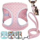 Dog Harnesses and Leash set for Small Medium Dogs Girl Boy Puppy Pink Walk Vest
