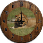 Large Wall Clock Lion Laying in the Cool Grass in the Hot Sun Safari Bar Sign