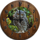 Large Wall Clock Staring Owl Close Up Grey and White Spotted Yellow Eyes