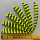 50PCS 5inch Striped Fluorescent Yellow Shield Fletches Feathers Fletching RW LW