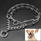 Martingale Chrome Prong Collar for Dogs Rubber Tips Training Pinch Choke Collar