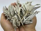 Loose White Sage Smudge Leaves & Clusters, California White Sage Leaves,Bulk Lot