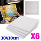 (pack of 6) Artist Blank Plain Stretched Painting Art Acrylic Canvas 30 X 40cm