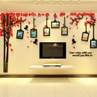3d Diy Family Tree Wall Stickers Photo Frame Home Decals Living Room Decor Mural