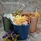 Ice Foods Stainless Steel Pail Bucket Eco Friendly Beer Fried Chicken Bucket New