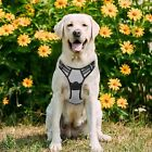 No-pull Dog Harness Heavy Duty Adjustable Vest with 2 Leash Clips Safe Control