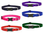 "LUPINE DOG COLLAR 1/2"" wide Red Blue Green Purple Pink Black Pet"