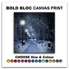 Snow Scene park LANDSCAPES  Canvas Art Print Box Framed Picture Wall Hanging BBD