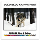 White Wolf Wild ANIMALS  Canvas Art Print Box Framed Picture Wall Hanging BBD