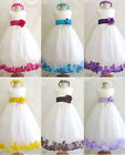 NEW IVORY TURQUOISE CHRISTMAS PAGEANT WINTER GIRL DRESS