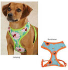 Soft Fabric Flutter Bugs Dog Harness Harnesses Zack & Zoey Mesh Pet