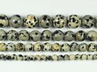 "Natural Dalmation Jasper Stone Gemstone Round Loose Beads 15.5"" 4mm,6mm,8mm,10mm"
